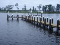Piers in Delaware